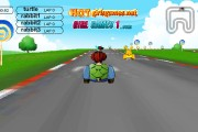 Crazy Turtle Car Racing Icon